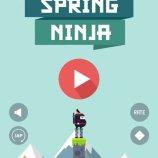 Скриншот Spring Ninja