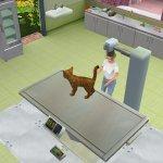 Скриншот Pet Vet 3D: Animal Hospital – Изображение 4
