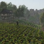 Скриншот Life is Feudal: Forest Village – Изображение 11