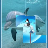 Скриншот Beautiful Dolphins!: Extreme Expose It!