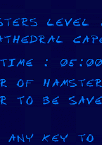 Обложка Hamsters
