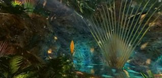 The Secret of the Mayan Island. Видео #1
