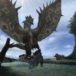 Скриншот Monster Hunter Tri – Изображение 40