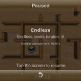 Скриншот Wooden Labyrinth 3D