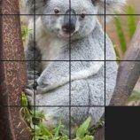 Скриншот PuzzleMe