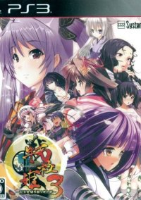 Обложка Sengoku Hime 3: Tenka o Kirisaku Hikari to Kage