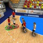 Скриншот Handball Simulator: European Tournament 2010 – Изображение 11