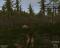 Wolf Simulator - Изображение 7