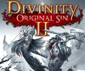 Divinity: Original Sin 2 профинансирована за 12 часов