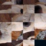 Скриншот iArtPuzzle – Изображение 2