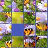 Скриншот Beauty Glide – Изображение 3