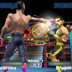 Скриншот Ready 2 Rumble Revolution – Изображение 111