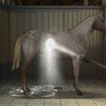 Скриншот My Horse And Me 2 – Изображение 3