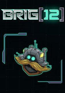 BRIG 12