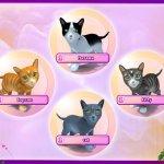 Скриншот I Love Cats. 22 Cat Games – Изображение 1