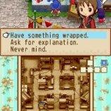 Скриншот Harvest Moon: Grand Bazaar – Изображение 1