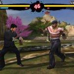Скриншот Bruce Lee Dragon Warrior – Изображение 2