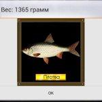 Скриншот True Fishing – Изображение 8