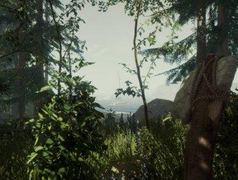 The Forest — записки из мертвого леса