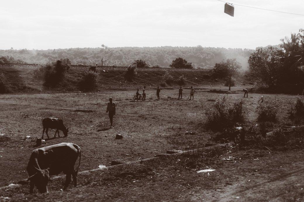 Индия глазами Трофимова   Канобу - Изображение 6383