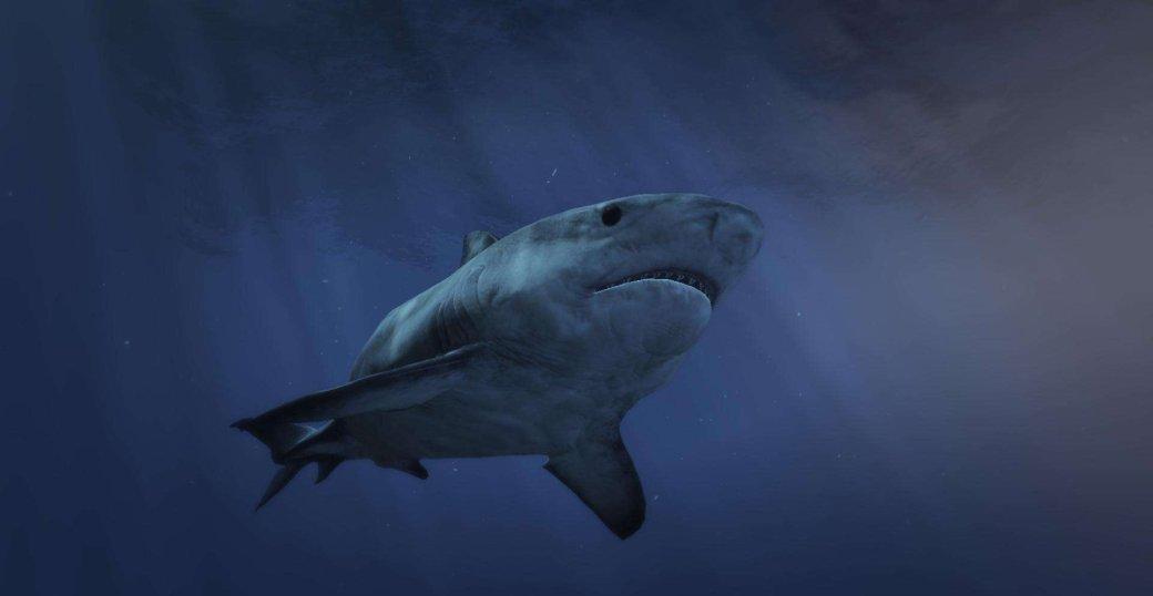 Хотите почувствовать себя акулой-людоедом? Вам поможет мод для Grand Theft Auto5 | Канобу - Изображение 2736